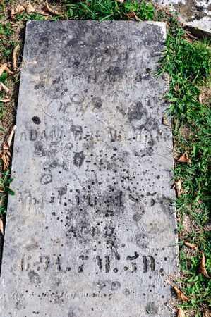 BRENENMAN, BARBARA - Richland County, Ohio | BARBARA BRENENMAN - Ohio Gravestone Photos