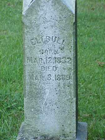BULL, ELI - Richland County, Ohio | ELI BULL - Ohio Gravestone Photos