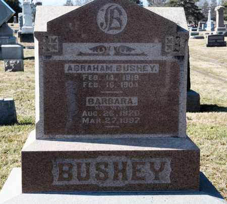 BUSHEY, BARBARA - Richland County, Ohio | BARBARA BUSHEY - Ohio Gravestone Photos