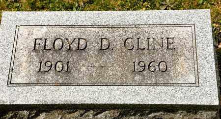 CLINE, FLOYD D - Richland County, Ohio | FLOYD D CLINE - Ohio Gravestone Photos