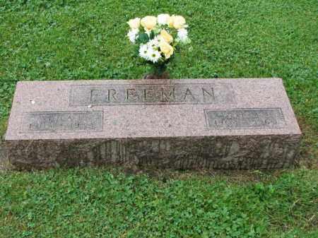 FREEMAN, VIOLA E. - Richland County, Ohio   VIOLA E. FREEMAN - Ohio Gravestone Photos