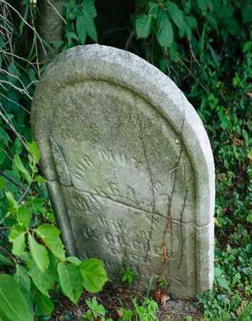 GILCHER, MARGARET - Richland County, Ohio | MARGARET GILCHER - Ohio Gravestone Photos