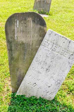 MILLER, ELISABETH - Richland County, Ohio | ELISABETH MILLER - Ohio Gravestone Photos