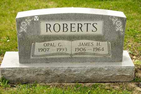 ROBERTS, OPAL G - Richland County, Ohio | OPAL G ROBERTS - Ohio Gravestone Photos