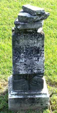 HIGBY, SYLVESTER - Ross County, Ohio | SYLVESTER HIGBY - Ohio Gravestone Photos