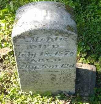 MEHLE, LOUISA - Sandusky County, Ohio | LOUISA MEHLE - Ohio Gravestone Photos