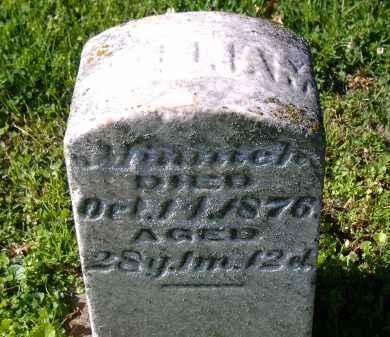 MINNICK, WILLIAM - Sandusky County, Ohio | WILLIAM MINNICK - Ohio Gravestone Photos
