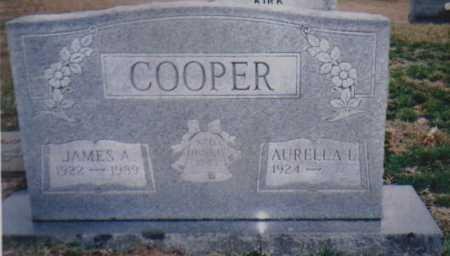 COOPER, JAMES A. - Scioto County, Ohio | JAMES A. COOPER - Ohio Gravestone Photos