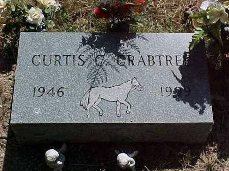 CRABTREE, CURTIS - Scioto County, Ohio   CURTIS CRABTREE - Ohio Gravestone Photos