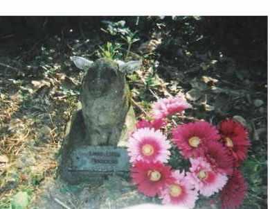 EICHENLAUB, LOUISA BELLE - Scioto County, Ohio | LOUISA BELLE EICHENLAUB - Ohio Gravestone Photos