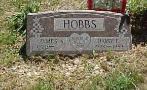 HOBBS, DAISY F. - Scioto County, Ohio   DAISY F. HOBBS - Ohio Gravestone Photos