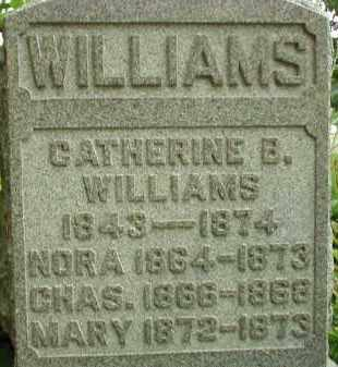 WILLIAMS, CATHERINE B. - Scioto County, Ohio | CATHERINE B. WILLIAMS - Ohio Gravestone Photos