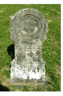 WILLIAMS, ELIZABETH - Scioto County, Ohio | ELIZABETH WILLIAMS - Ohio Gravestone Photos