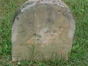WILSON, A.M. - Scioto County, Ohio   A.M. WILSON - Ohio Gravestone Photos