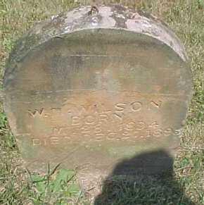 WILSON, W. M. - Scioto County, Ohio | W. M. WILSON - Ohio Gravestone Photos