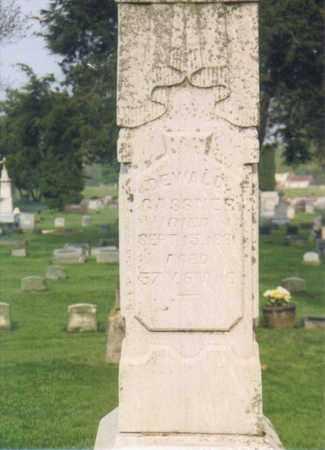 GASSNER, DEWALD - Seneca County, Ohio | DEWALD GASSNER - Ohio Gravestone Photos