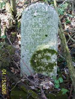 BARCUS, NANCY - Shelby County, Ohio | NANCY BARCUS - Ohio Gravestone Photos