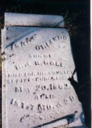 COLE, ISAAC ORLANDO - Shelby County, Ohio | ISAAC ORLANDO COLE - Ohio Gravestone Photos