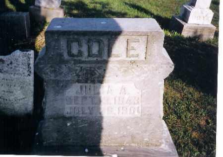 COLE, JULIA  A - Shelby County, Ohio | JULIA  A COLE - Ohio Gravestone Photos