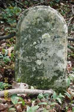 COX, JOHN - Shelby County, Ohio | JOHN COX - Ohio Gravestone Photos