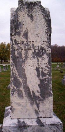 DEWEESE, ELIZABETH E. - Shelby County, Ohio | ELIZABETH E. DEWEESE - Ohio Gravestone Photos