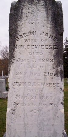 DEWEESE, SARAH JANE - Shelby County, Ohio | SARAH JANE DEWEESE - Ohio Gravestone Photos