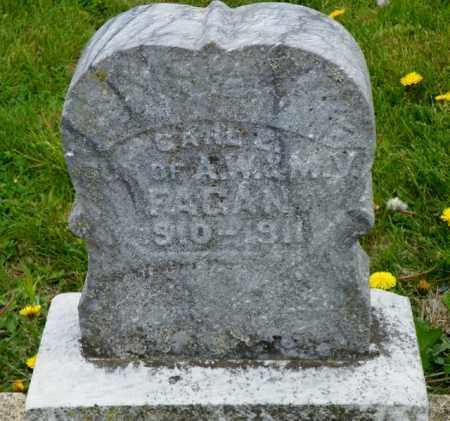 FAGAN, CARL M. - Shelby County, Ohio | CARL M. FAGAN - Ohio Gravestone Photos