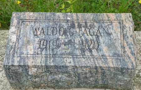 FAGAN, WALDO C. - Shelby County, Ohio | WALDO C. FAGAN - Ohio Gravestone Photos