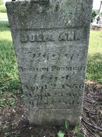 FOSNIGHT, JULIA ANN - Shelby County, Ohio | JULIA ANN FOSNIGHT - Ohio Gravestone Photos
