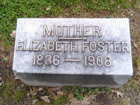 FOSTER, ELIZABETH - Shelby County, Ohio | ELIZABETH FOSTER - Ohio Gravestone Photos