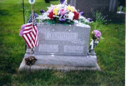 JENKINS, PAUL - Shelby County, Ohio | PAUL JENKINS - Ohio Gravestone Photos