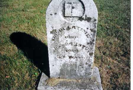 LATIMER, DAVID - Shelby County, Ohio   DAVID LATIMER - Ohio Gravestone Photos