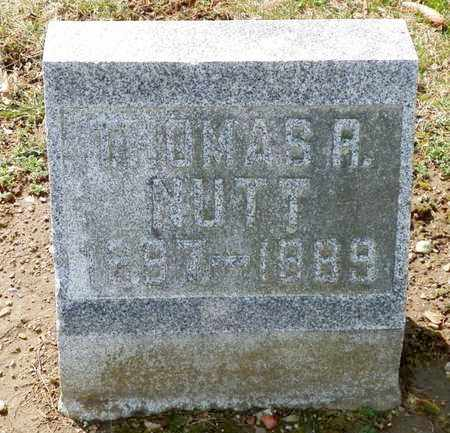 NUTT, THOMAS R. - Shelby County, Ohio   THOMAS R. NUTT - Ohio Gravestone Photos