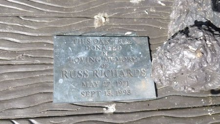 RICHARDS, RUSSELL TODD - Shelby County, Ohio | RUSSELL TODD RICHARDS - Ohio Gravestone Photos