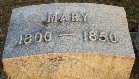 STEPHENSON, MARY - Shelby County, Ohio   MARY STEPHENSON - Ohio Gravestone Photos