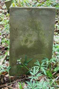 THOMPSON, MARTHA - Shelby County, Ohio | MARTHA THOMPSON - Ohio Gravestone Photos
