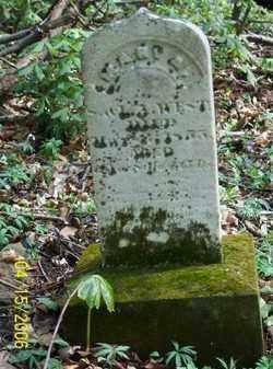 WEST, MARY A. - Shelby County, Ohio | MARY A. WEST - Ohio Gravestone Photos