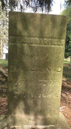 BRADFIELD, WILLIAM J. - Stark County, Ohio | WILLIAM J. BRADFIELD - Ohio Gravestone Photos