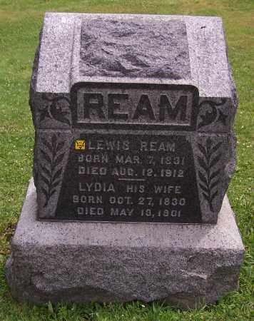 REAM, LYDIA - Stark County, Ohio | LYDIA REAM - Ohio Gravestone Photos