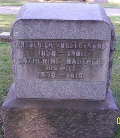 VOGELGESANG, CATHERINE - Stark County, Ohio   CATHERINE VOGELGESANG - Ohio Gravestone Photos