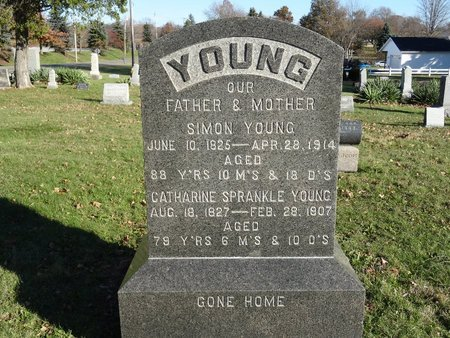YOUNG, CATHARINE - Stark County, Ohio | CATHARINE YOUNG - Ohio Gravestone Photos