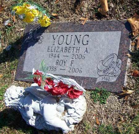 YOUNG, ROY F. - Stark County, Ohio | ROY F. YOUNG - Ohio Gravestone Photos
