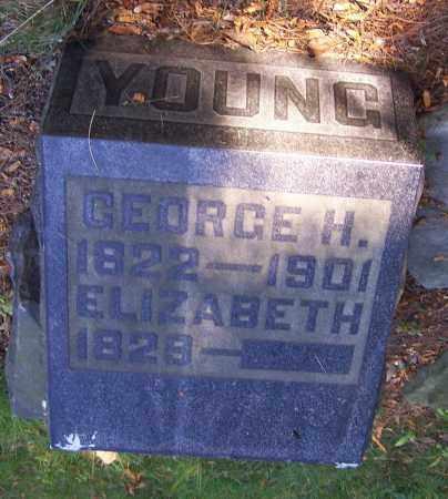 YOUNG, ELIZABETH - Stark County, Ohio   ELIZABETH YOUNG - Ohio Gravestone Photos
