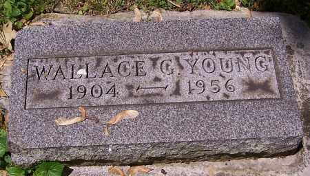 YOUNG, WALLACE G. - Stark County, Ohio   WALLACE G. YOUNG - Ohio Gravestone Photos