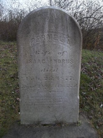 ANDRUS, PERMELIA - Trumbull County, Ohio | PERMELIA ANDRUS - Ohio Gravestone Photos