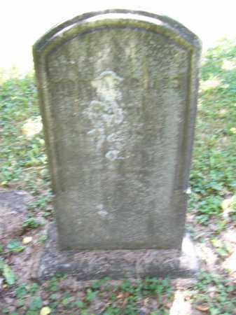 GILES BOLES, DORCAS - Trumbull County, Ohio | DORCAS GILES BOLES - Ohio Gravestone Photos