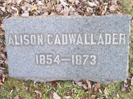 CADWALLADER, ALISON - Trumbull County, Ohio | ALISON CADWALLADER - Ohio Gravestone Photos