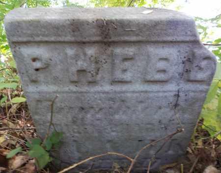 CLARK, PHEBE - Trumbull County, Ohio   PHEBE CLARK - Ohio Gravestone Photos