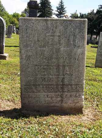 CLARK, PERLIA - Trumbull County, Ohio | PERLIA CLARK - Ohio Gravestone Photos