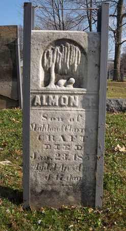 CRAFT, ALMON T. - Trumbull County, Ohio | ALMON T. CRAFT - Ohio Gravestone Photos